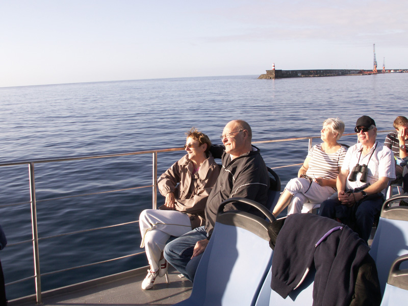 hvalsafari på azorerne